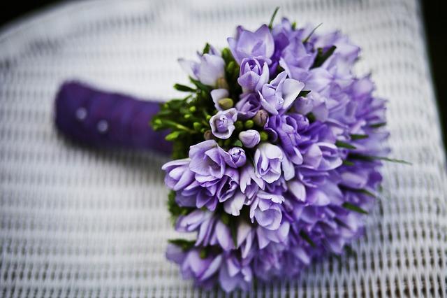 fialové květiny